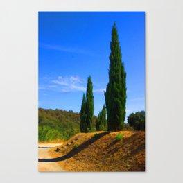 Provence Flames Canvas Print
