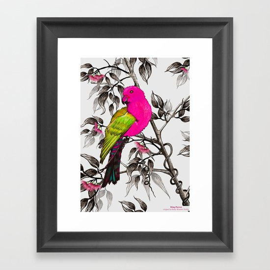 King Parrot Framed Art Print