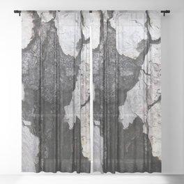 bark abstact no1 Sheer Curtain