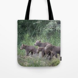 Four Brown Bear Cubs Tote Bag