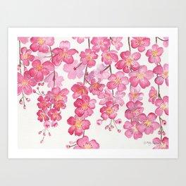 Weeping Cherry Blossom Art Print