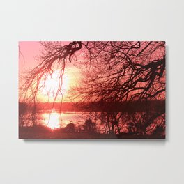 Deep Red Sunset through Trees Metal Print