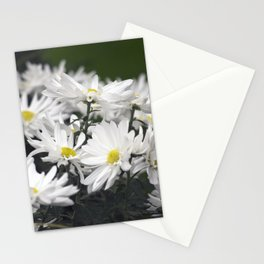 Longwood Gardens Autumn Series 276 Stationery Cards