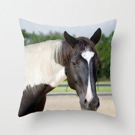 Decco Throw Pillow