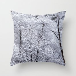 Snow-Capped Trees in Oak Creek Canyon Sedona Throw Pillow