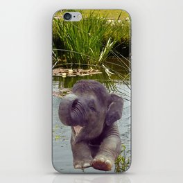Elephant and Water iPhone Skin