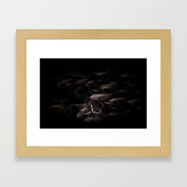 Surrounded by Solo Framed Art Print