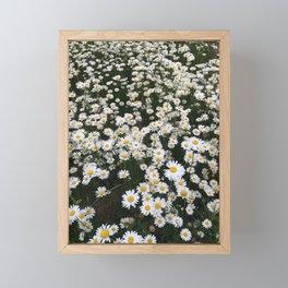 Field of Wild Daisies Framed Mini Art Print