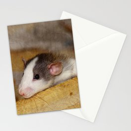 Cute Rat Stationery Cards