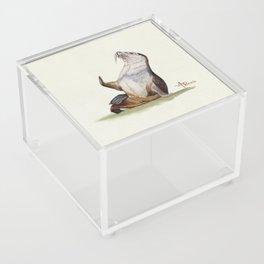 Sea Lion Watercolor Acrylic Box