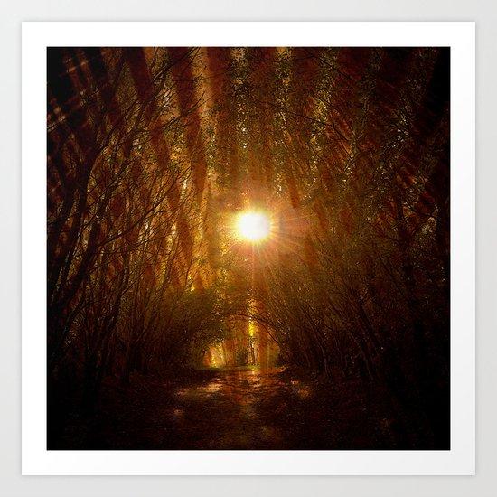 forest ####### Art Print