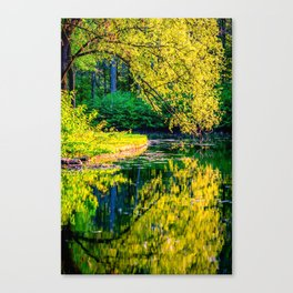 A Kiss from the Other Side- Bonn, Germany Canvas Print