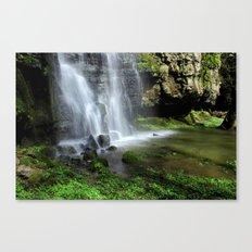 Waterfall at Swallet Falls Canvas Print
