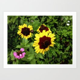 Flowers In Mid-Summer Art Print