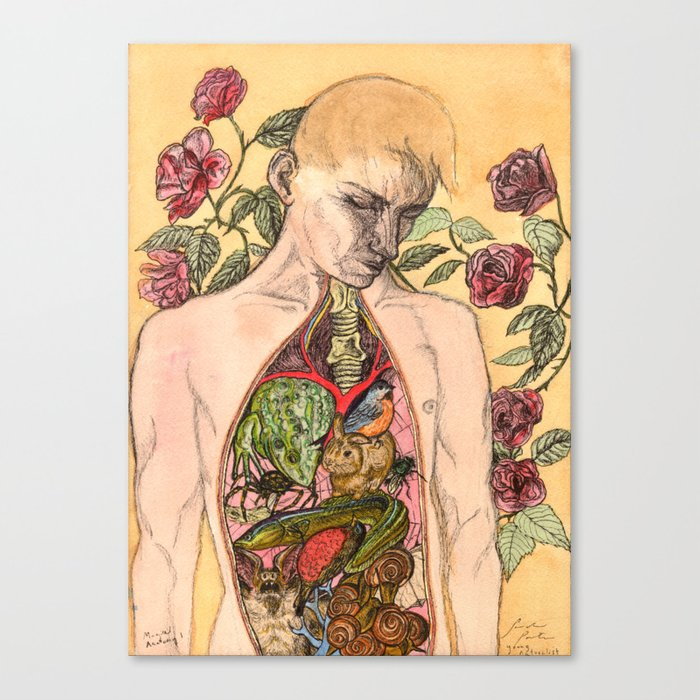 Magical Anatomy:  Young Naturalist Canvas Print