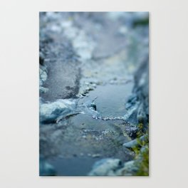 Swimming in pools Canvas Print