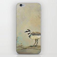 Shore Bird 2945 iPhone & iPod Skin