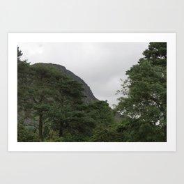 Wales Landscape 4 Cader Idris and Trees Art Print