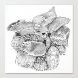camo mouse #1 Canvas Print