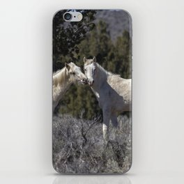 Wild Horses with Playful Spirits No 1 iPhone Skin