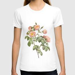 Vintage Pink Roses [03] T-shirt