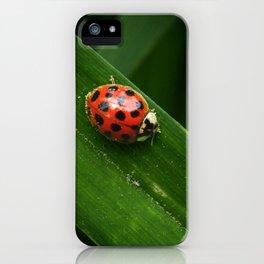 Little Lady iPhone Case
