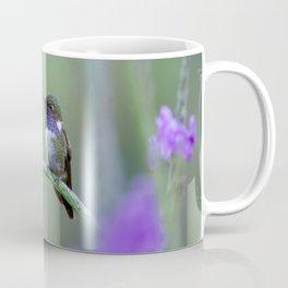 Volcano Hummingbird in Costa Rica Coffee Mug