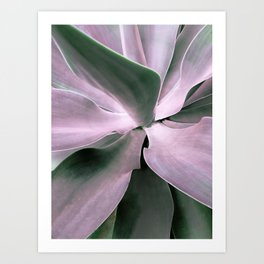 #agave Art Print