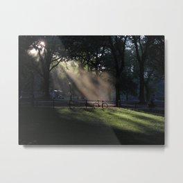 central park mist Metal Print