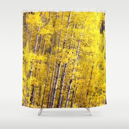 Yellow Grove of Aspens Shower Curtain