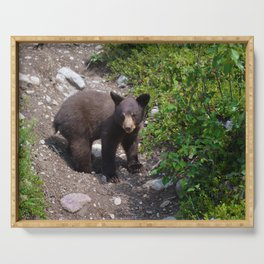 Black bear cub Serving Tray