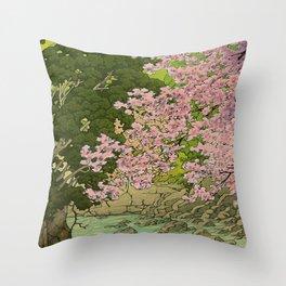 Shaha - A Place Called Home Throw Pillow