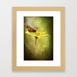 Smooth Landing Framed Art Print