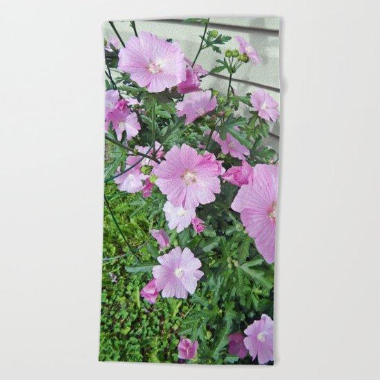 Pink Musk Mallow Bush in Bloom Beach Towel