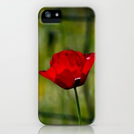 Poppy and Fence iPhone Case