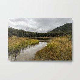 Cattleman's Bridge Site - Grand Tetons Metal Print