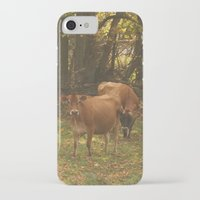 cows iPhone & iPod Cases featuring Cows by Ashley Callan