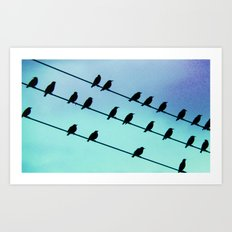 Birds & Lines #2 Art Print
