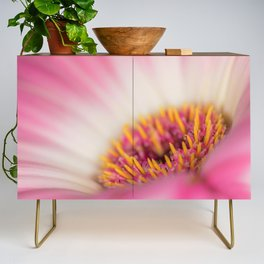 Sexy Pink Makes You Think Credenza