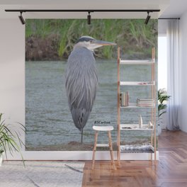 Blue Heron at Hillsboro Pond Wall Mural