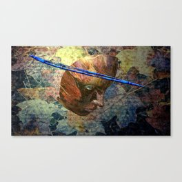 Night goes down Canvas Print