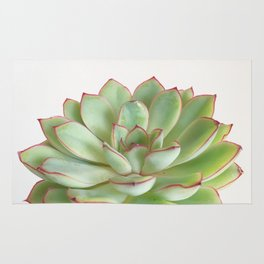 Green Succulent Rug