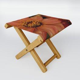 Faded Zinnia Folding Stool