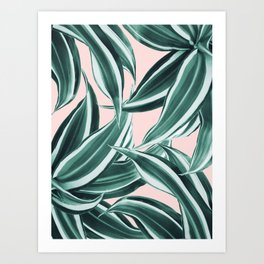 Dracaena Tropical Leaves Pattern #1 #tropical #decor #art #society6 Art Print
