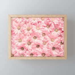 Lovely Pink Daisies Framed Mini Art Print