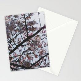 Sakura Pattern 2 Stationery Cards