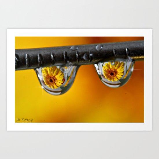 Sunshine Drops Art Print