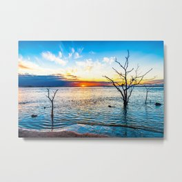 Three Tree Trunks and the Landscape Metal Print