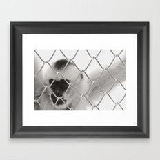 Captivity Framed Art Print