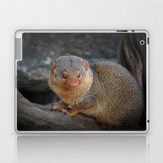 Manguste Laptop & iPad Skin